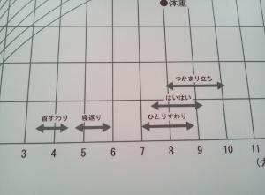 成長具合 (300x221).jpg