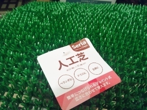 進入禁止人工芝1 (300x225).jpg